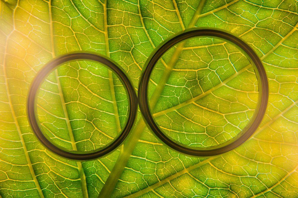 wedding ring foglia leaf anello fedi macro flare alberto feltrin